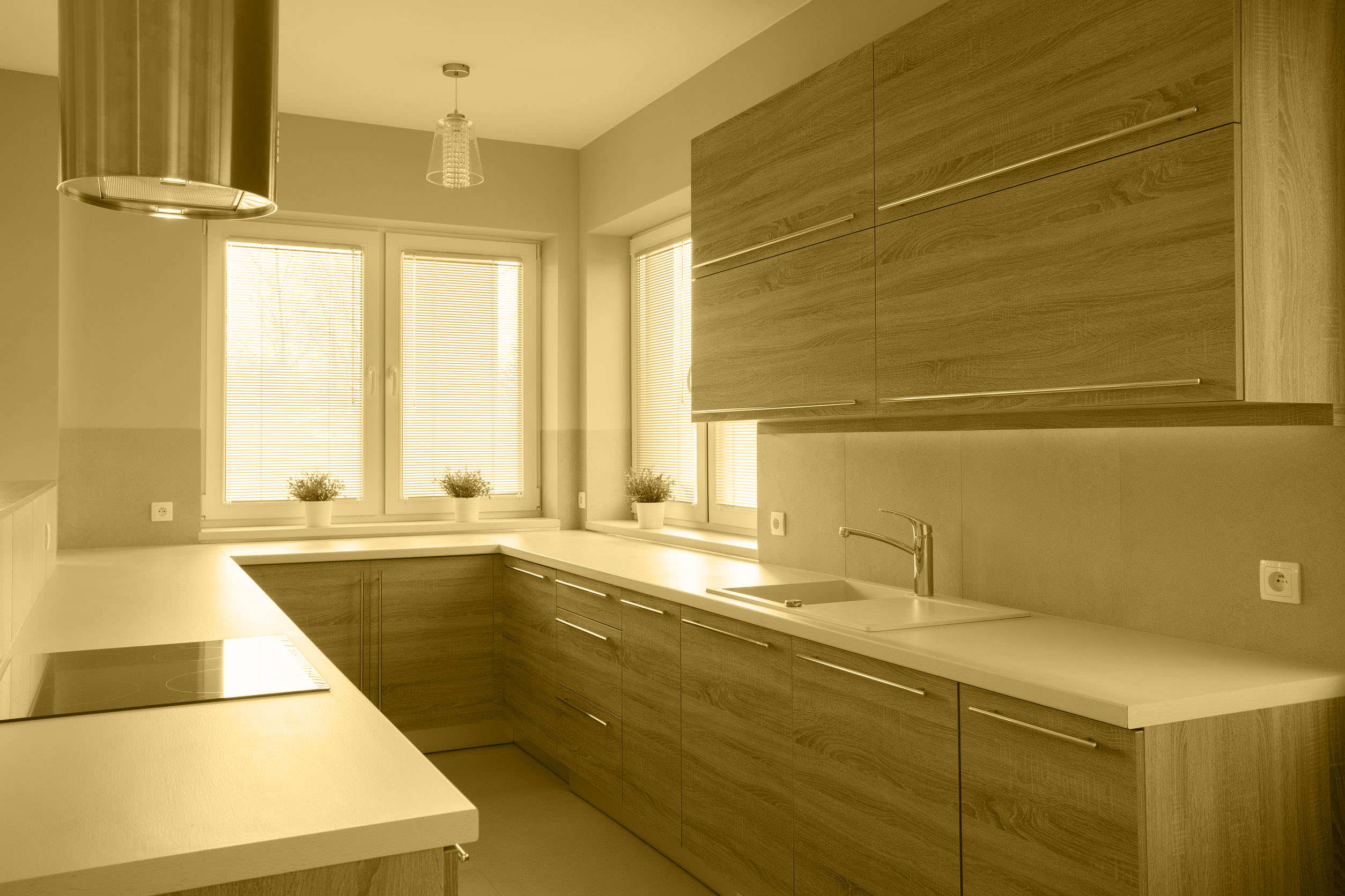 48766087 - bright wooden kitchen in beauty luxury house